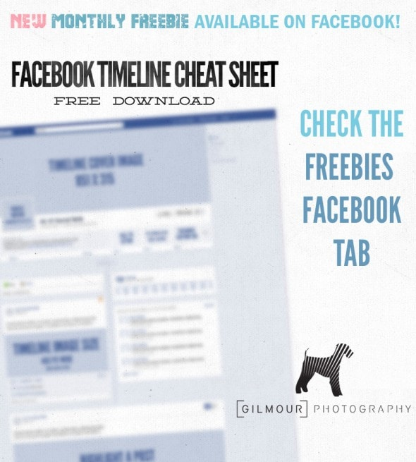 13janLP-Facebook-Timeline-Cheat-Sheet
